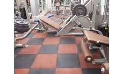 Gym Surface
